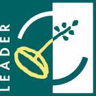 Logo leader hd